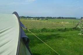 Mini camping Drenthe