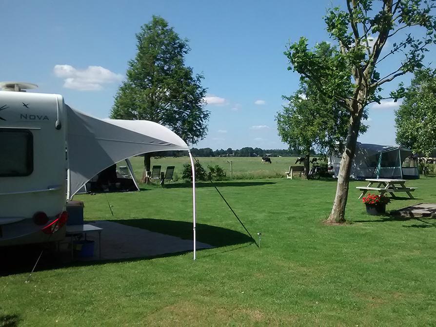 Camping Vorrelveen kampeerveld