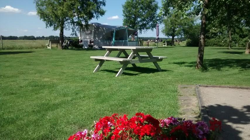 Ruime plaatsen op kleine camping in Drenthe